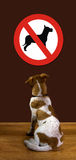 No Dogs Allowed. Royalty Free Stock Images