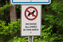 A no dogs allowed in this area sign.  Stock Photography