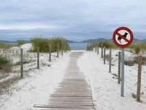 No dogs are allowed on the beach Stock Image