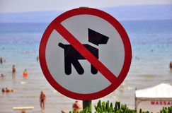 No Dogs Allowed Royalty Free Stock Images