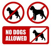 no dogs allowed. Dog prohibition sign