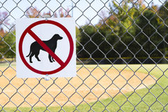 No Dogs Allowed Inside Sign. A no dogs allowed inside sign bolted to a chain link fence at a local baseball field Royalty Free Stock Photography