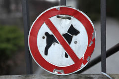 No Dogs Allowed! Royalty Free Stock Photography