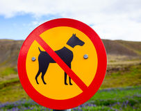 No Dogs Allowed road sign Royalty Free Stock Photos