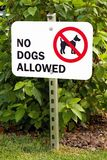 No Dogs Allowed Sign Royalty Free Stock Images