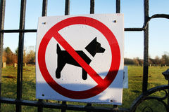 No dogs allowed sign. Royalty Free Stock Photo