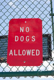 No Dogs Allowed Sign Royalty Free Stock Photography