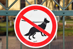 No dogs allowed sign on the metal fence of the park Royalty Free Stock Image