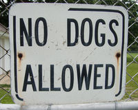 No Dogs Allowed Sign Stock Image