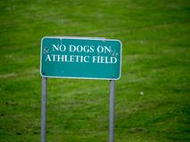 `No dogs on athletic field` sign in a park. `No dogs on athletic field` sign erected in a park Royalty Free Stock Photos