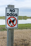 No Dogs on Beach Sign Royalty Free Stock Image