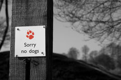 No dogs. Black and white image of a sign saying sorry no dogs dog print in red Royalty Free Stock Image