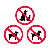No dogs, no pets, no leash dogs, no free dogs red prohibition sign. Stock Images