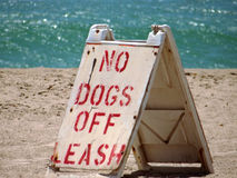 No Dogs Off Leash Sign On Malibu Beach In California Royalty Free Stock Photography
