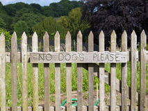 No Dogs Please. Royalty Free Stock Images