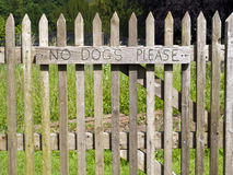 No Dogs Please. Royalty Free Stock Photos