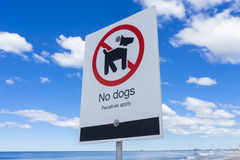 No dogs sign on a beach Stock Photos