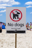 No dogs sign on a beach Royalty Free Stock Image