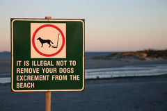 No dogs sign on the beach of Cape Town Royalty Free Stock Image