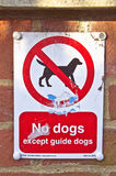 No dogs Stock Photography