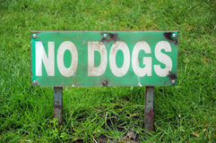 NO DOGS - sign on lawn. Sign on grassy lawn - No dogs Stock Image