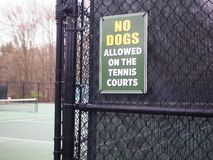 NO DOGS sign tennis court royalty free stock photos