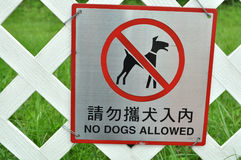 No dos allowed. A No Dogs Allowed sign hangs on a white fence Royalty Free Stock Images