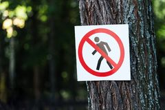 No entry - a sign hanging on a tree royalty free stock photo