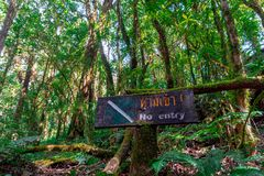A no-entry sign on a tree in the middle of a national park. stock photos
