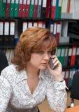 No escritório Imagem de Stock