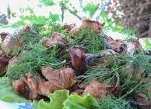 No espeto da carne de porco da carne Fotografia de Stock