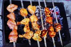 No espeto da carne de porco e da galinha com as especiarias de uma mistura Foto de Stock