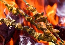 No espeto da galinha e da carne de porco no fundo do fogo Imagens de Stock