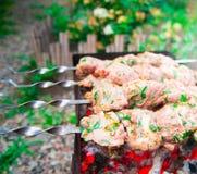 No espeto em carvões Carne de porco suculento de mármore fotografia de stock royalty free