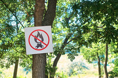 No fire sign in a summer forest Stock Photo