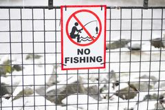 No fishing sign and icon. Uk royalty free stock photos
