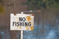 No Fishingsign. A worn and tatty  No Fishing sign located in a pond with a pair of  ducks swimming past, out of focus in the background Stock Photos