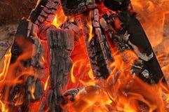 No fogo Imagem de Stock