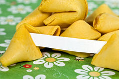 No Fortune Today Stock Images
