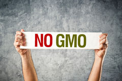 No GMO. Man holding banner with Anti GMO message royalty free stock photos