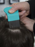 No head lice. Mother checking childs head for lice with a comb Royalty Free Stock Photography