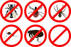 No insects Stock Images