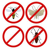 No insects cockroach, moth and wasp Stock Image