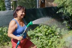No jardim do verão Fotos de Stock Royalty Free