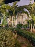 No jardim, h? ?rvores verdes plantadas ao redor H? uma maneira pequena do trajeto em linha reta ? casa doce da casa foto de stock royalty free