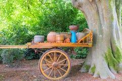 No jardim velho Fotos de Stock Royalty Free