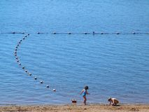 No lago Imagem de Stock Royalty Free