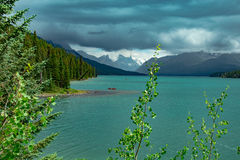 No lago Maligne em Jasper National Park Fotos de Stock Royalty Free