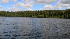 No lago nas madeiras video estoque