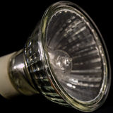No LED GU10 bulbs, lamps over a black background Stock Photography